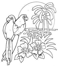 parrots  on paradise  Blanco Designs