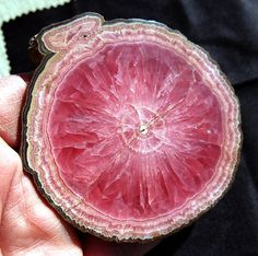 Rhodochrosite polished round with 100% by GoldenHourMinerals