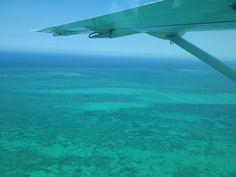 Hol Chan Marine Reserve, Belize, April 2012