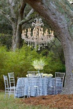 I have this vision to put my grandmother's old chandelier in one of our big oaks. Perfect outdoor dining lighting.