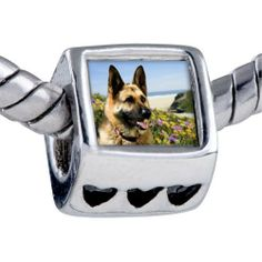 Pugster Bead Dog Photo Bead Heart Charm Bead Fits Pandora Bracelet Pugster. $12.49. Fit Pandora, Biagi, and Chamilia Charm Bead Bracelets. It's the photo on the heart charm. Hole size is approximately 4.8 to 5mm. Unthreaded European story bracelet design. Bracelet sold separately
