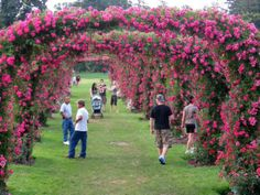 Get out and smell the roses this #SpringItOnPA at the Rose Garden Park in Bethlehem. The garden features more than 100 varieties of the beloved fragrant flower. The garden is a backdrop for a popular local concert and theater venue, and also contains a Civil War monument.
