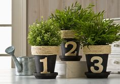 Numbered Herb Pots created with Delta Soy Paints Used as house numbers? This would be cute with one # on each pot then put on the front steps!