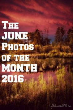 Jesse Martineau presents his MOST popular June photos of Come take a look at what became over the top popular this month, tell him YOUR favorite! Dads, June, Lights, Popular, Photos, Photography, Pictures, Photograph, Fotografie