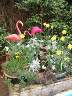 The old coffee table moved outside and holds various pots and my silly flamingos
