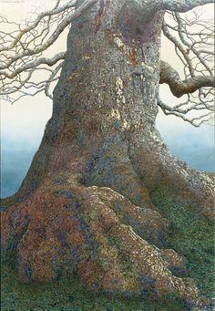 Charles Brindley: giant beech