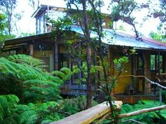 World-Class, Genuine Treehouse in Volcano National Park Area   Vacation Rental in Opihihale from @homeaway! #vacation #rental #travel #homeaway