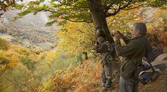 Los que buscan practicar deportes en plena naturaleza, los que quieran observar animales en su medio o los que simplemente quieren pasear en contacto con la naturaleza en estado puro, Asturias guarda un sinfín de posibilidades.