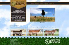 Grassy Run Farms, Website Design, Livestock, Agriculture, brown, blue, black, green