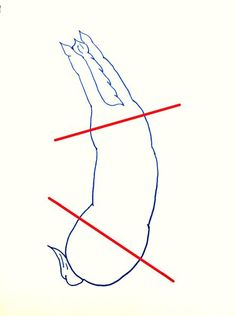 Fantastic article about riding aids to create the appropriate bend in the horse for riding a circle