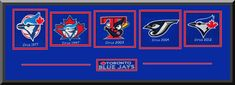 Toronto Blue Jays Team Wool Blend Fabric Logos Throughout The Years With Team Color Double Matting-Framed Awesome & Beautiful