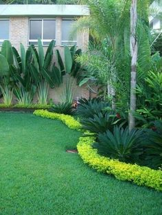 Rain and snow are going to play a huge part in your yard landscaping decisions. For example you will have to plan for your yard landscaping with care. Side Yard Landscaping, Florida Landscaping, Tropical Landscaping, Landscaping Ideas, Landscaping With Palm Trees, Acreage Landscaping, Mailbox Landscaping, Privacy Landscaping, Florida Gardening