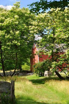 Weir Farm National park, Wilton, Connecticut ... Amazing!