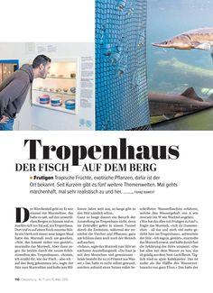 Tropenhaus Event Ticket, Exotic Plants, Water Bottle, Jungles, Switzerland, Pisces, Woodland Forest