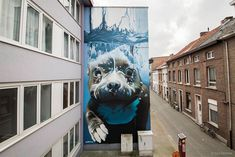 4-Story Street Art Mural Of A Dog Diving Underwater Unveiled In Belgium - Bored Panda