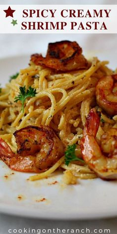 Spaghetti made heavenly with a white wine, parmesan cream sauce, spiked with paprika, cayenne, thyme and garlic. Just add shrimp and you've got a beautiful dinner idea. Spicy Creamy Shrimp Pasta Recipe Amy Hoang c Pasta Dinner Recipes, Shrimp Pasta Recipes, Fish Recipes, Seafood Recipes, Cooking Recipes, Healthy Recipes, Cooking Bacon, Spaghetti Recipes, Beef Recipes