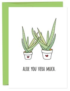 This basically says everything you want to your love. I love you very much and want to intertwine my limbs with yours (or maybe just hands if you're just besties). Best gifted with an Aloe plant. • A6