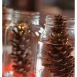 Fall Science Experiment for Kids | Pinecones