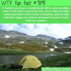 Swedish people have a constitutional right to camp and hike…- WTF fun facts