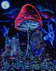 Cool trippy pictures that takes your mind on a LSD trip. Dope collection of weird trippy pictures to look at when your HIGH. When Drugs Meet Art. Poster Wall, Poster Prints, Art Prints, Art Posters, Trippy Pictures, Psychadelic Art, Black Light Posters, Mushroom Art, Mushroom Drawing