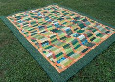 Snakes in the Grass finished with the help of Quilting Big Projects on a Small Machine on Craftsy!