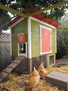 Chicken coop with fenced in outdoor area
