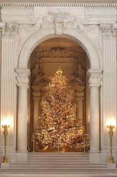 2007 World Tree of Hope