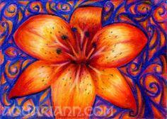 Orange Tiger Lily Art  Flower Magnet  Colored Pencil by aquariann, $3.00 #rt #etsysns