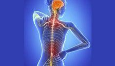 Científicos identifican la posible causa de la Esclerosis Múltiple