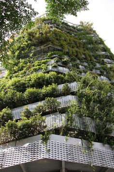 Vertikale grüne Fassade