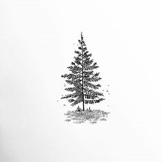 #Spruce #ChristmasOrnament #ChristmasTree #Fir Wallpaper, Pine, Black and white, Font - Photo by @blackworknow - Follow #extremegentleman for more pics like this! Black And White Doodle, Black And White Tree, Black And White Wallpaper, Black And White Prints, Black And White Painting, Black And White Pictures, Simple Christmas Tree Drawing, Tree Drawing Simple, Black Christmas Trees