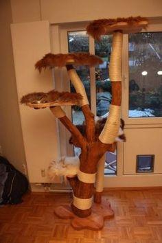 Alles in allem ein Kratzbaum, der alles bietet und alle Blicke auf sich zieht.