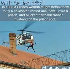 real life prison escape using a helicopter - WTF Facts Wtf Fun Facts, Funny Facts, Random Facts, Crazy Facts, Random Stuff, Random Things, Funny Memes, The More You Know, Good To Know