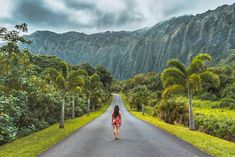 Ho'omaluhia Botanical Gardens Oahu is so stunning, that seeing this image in the flesh is almost one of those 'pinch me' moments. And it doesn't stop there. Once you enter the botanical garden, the layers of lush greenery continue, while your jaw proceeds to drag behind you.