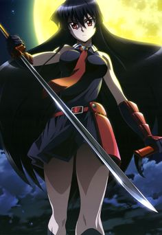 http://media.animevice.com/uploads/1/18405/772325-yande.re_290944_akame_akame_ga_kill__sword.jpg