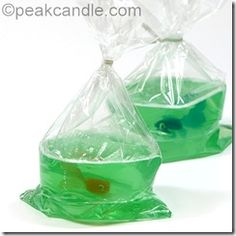 Home made Fish-in-a-bag soap. Great gift idea!