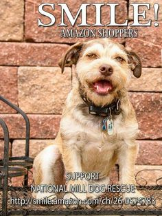 Support National Mill Dog Rescue with your Amazon shopping. After a quick selection of NMDR through your Amazon account, Amazon will donate .5% back to NMDR.  Just click this link to register: http://smile.amazon.com/ch/26-0574783