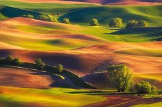 Wandering Colors by Nagesh Mahadev on 500px