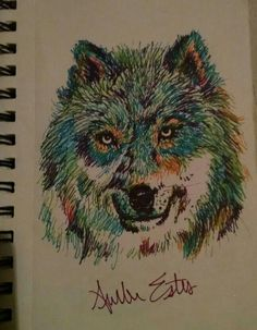 Colorful wolf drawing with sharpies. By Amber Estes