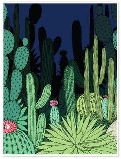 CACTI SERIES - Annie Davidson - Graphic Design