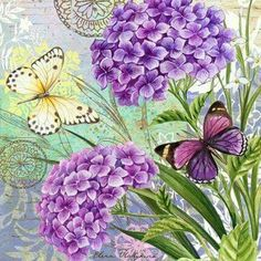 flower-collage-hydrangia-and-butterflies by Levinson Designs Vintage Butterfly, Butterfly Art, Vintage Flowers, Flower Collage, Flower Art, Vintage Pictures, Vintage Images, Botanical Prints, Floral Prints