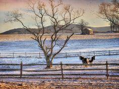 Sunrise in Hegins by Lori Deiter at Fine Art America