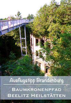Der Baumkronenpfad Beelitz Heilstätten, super Ausblicke und Einblicke. Natur…