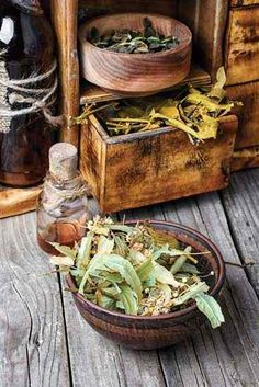 Create an Organized Home Apothecary - Health and Wellness - Mother Earth Living Organize dry herbs, tinctures, tea blends, and other medicine-making basics in a way that honors both form and function. Healing Herbs, Medicinal Herbs, Natural Healing, Herbal Remedies, Natural Remedies, Tea Blends, Drying Herbs, Interior Exterior, Herbal Medicine