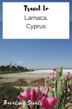 Visit historical sites, Salt Lake, and beautiful beaches in Larnaca, Cyprus. Click to read more or save this pin for later. More at Traveling Seouls
