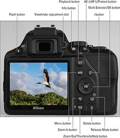 44 Most Popular Ideas for photography tips nikon cheat sheets Nikon D3200 Tips, Dslr Nikon, Nikon D3000, Dslr Cameras, Nikon Digital Camera, Canon Lens, Film Camera, Digital Slr, Photography For Dummies
