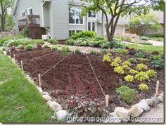 Front Lawn Vegetable Garden Design - Sun Ray Garden - Shawna Coronado