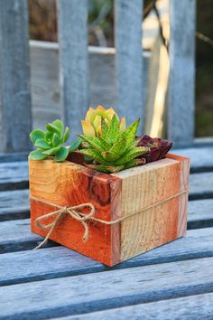 5x5 Succulent Planter Box - Redwood - great for centerpieces.