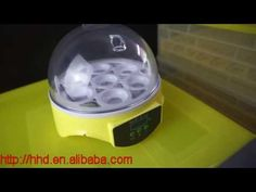 Nanchang Howard mini egg incubators