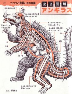 """""""This anatomical diagram of Anguirus shows eyes that can detect infrared light, a pair of sub-brains that control the forelegs and rear legs, highly developed rear leg muscles, and a heavily spiked rear carapace."""""""